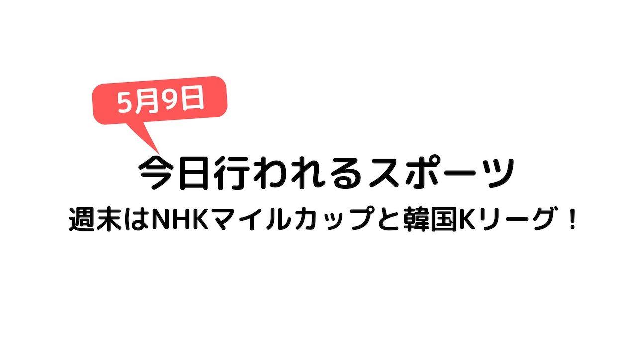 NHKマイルカップの予想オッズ