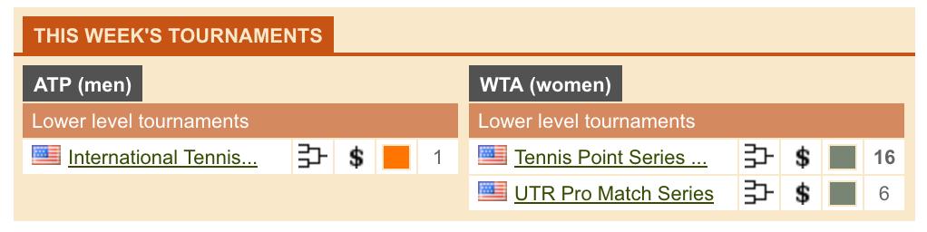 ブックメーカーのテニス情報サイト