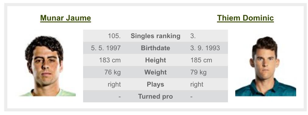 全米オープンテニスのドミニク