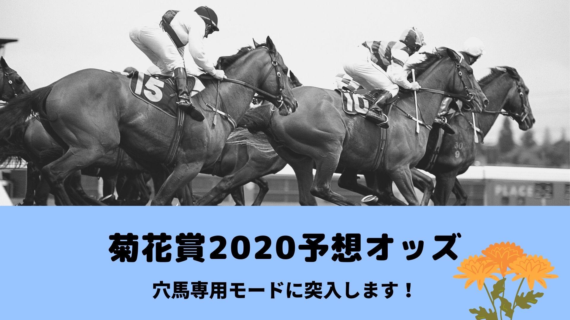 菊花賞2020ブックメーカー予想オッズ